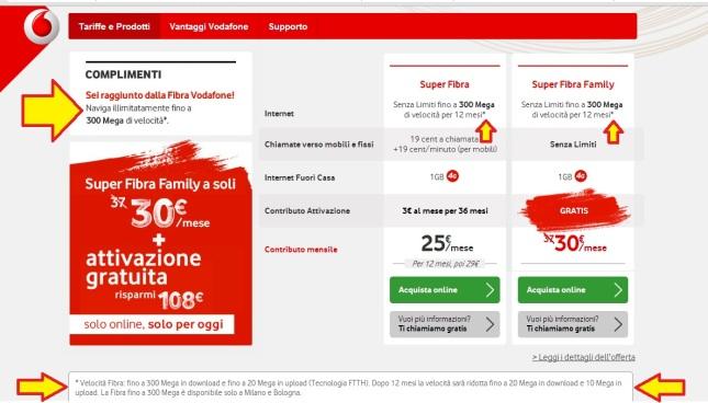 VodafoneFibra300